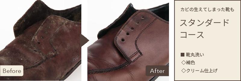 スニーカー; カビの生えてしまった革靴